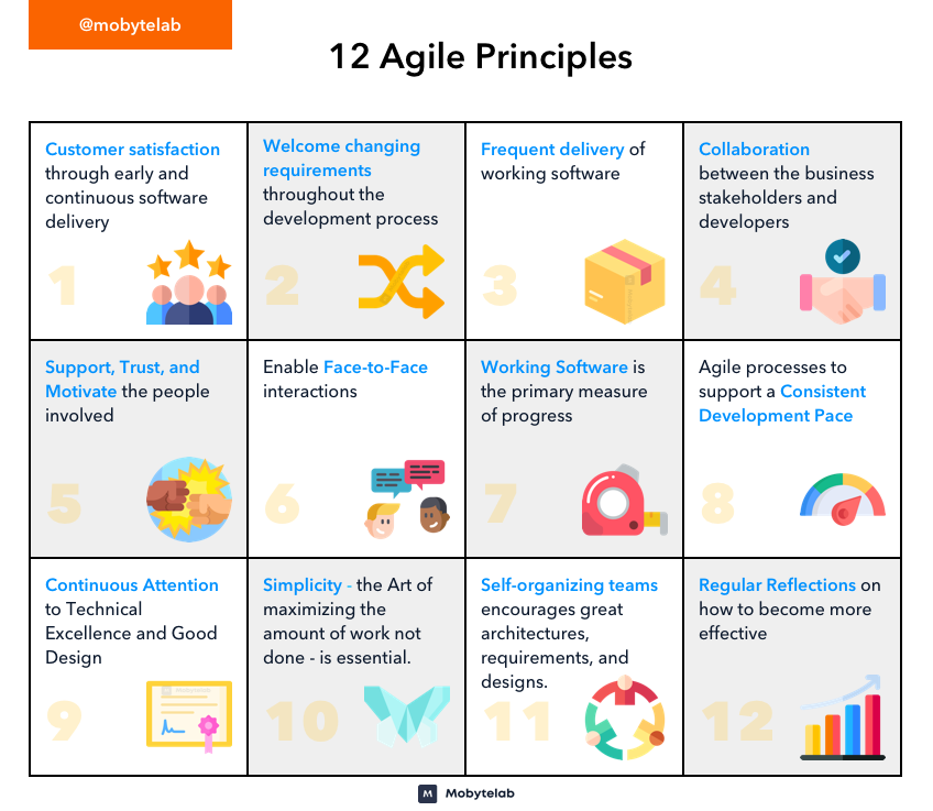 12 Agile Principles in Software Development Life Cycle